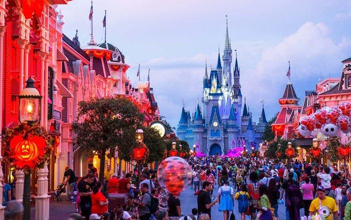 College Co-Op Opportunities At Walt Disney World